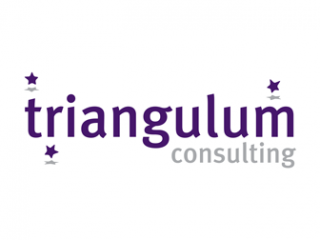 Triangulum Consulting